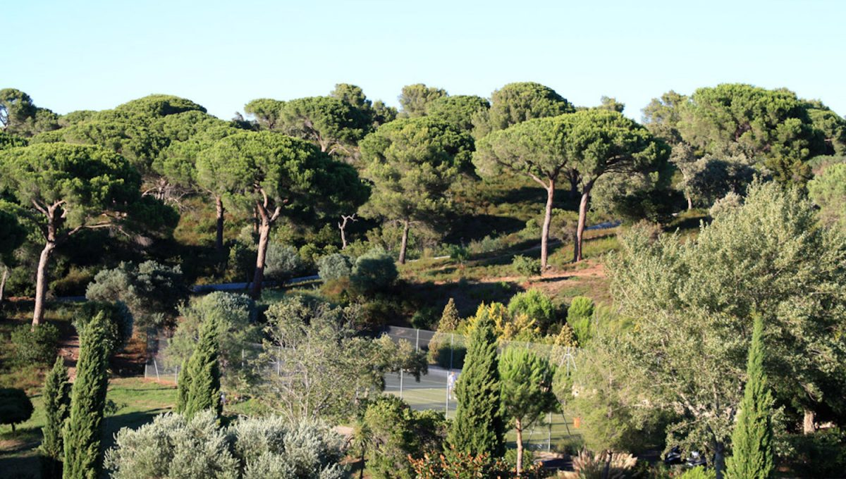 Bastide-Capon-Saint-Tropez-Dream-Houses-P3074-8